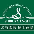 輸入の植木鉢:渋谷園芸 植木鉢屋