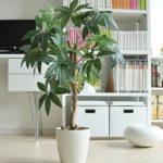 リアルで本物そっくりなおしゃれな光触媒の人工観葉植物おすすめ8選