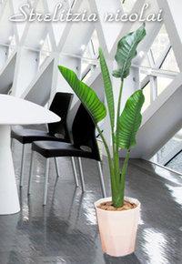 おしゃれな人工観葉植物5