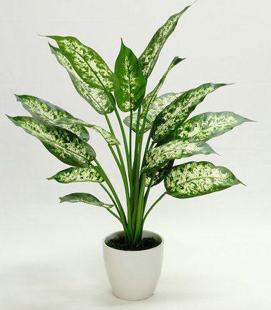 おしゃれな人工観葉植物6