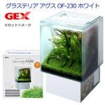 【スマホからエントリーしてポイント10倍!】【決算セール・限定価格】 【送料無料】 GEX グラス…
