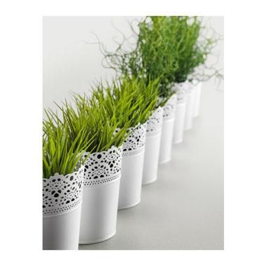 植木鉢・鉢カバー