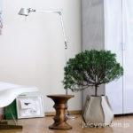おしゃれな観葉植物の「室内用植木鉢・鉢カバー」おすすめ16選