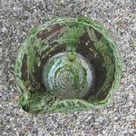11号カッパ付き水鉢 信楽焼すいれん鉢 メダカ鉢、 金魚鉢にも最適 睡蓮鉢 陶器スイレン鉢 ハス鉢…