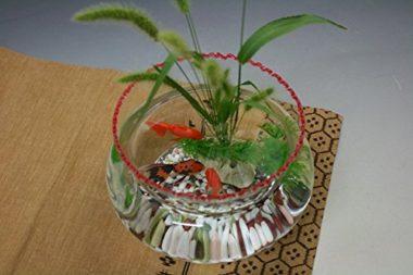 おしゃれでレトロなガラス金魚鉢7
