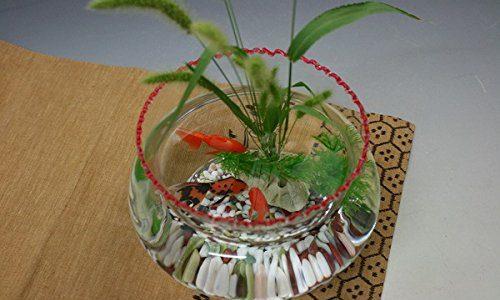 ガラスや陶器で和風レトロを演出!おしゃれな金魚鉢おすすめ15選