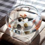 金魚鉢 ガラス鉢 円形 シンプル (小サイズ)