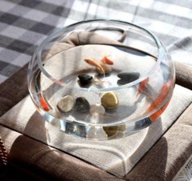 おしゃれでレトロなガラス金魚鉢4