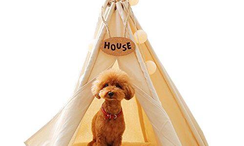 インテリアの邪魔をしない!室内のおしゃれな犬小屋おすすめ10選