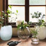花の魅力を引き立たせる!ガラス製のおしゃれな花瓶のおすすめ10選