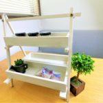 100均アイテムで簡単DIY!観葉植物をおしゃれに飾る「棚」の作り方