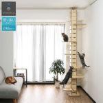 木登り好きな愛猫に!おしゃれな突っ張り型のキャットタワー10選