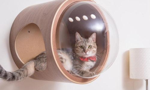 猫飼いさん必見!木製のおしゃれなキャットタワーおすすめ10選