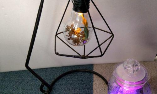 100円ショップのライトを使って2種類のおしゃれな照明をDIY!