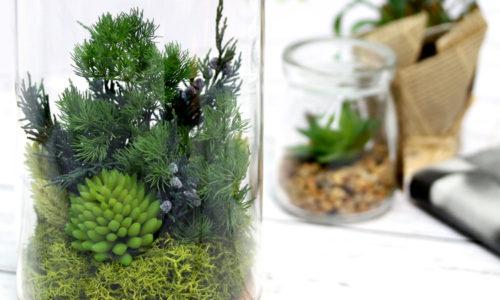 水槽やケースで育てる観葉植物!おしゃれなテラリウムおすすめ10選