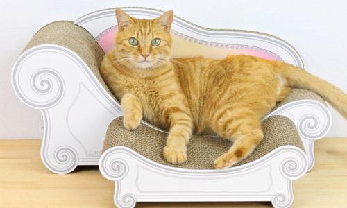 愛猫も気に入る!おしゃれでかわいすぎる猫用爪とぎおすすめ10選