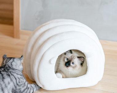 安心して落ち着ける!おしゃれなドーム型の猫用ベッドおすすめ10選