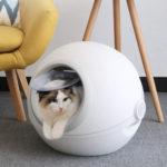 インテリアを邪魔しない!おしゃれな白のシンプル猫用トイレ10選