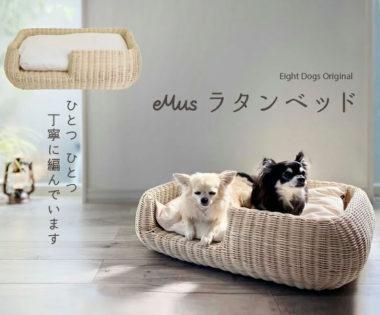 犬・猫ラタン調ペットベッド/